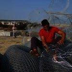 China Overtakes Persian Gulf Fish